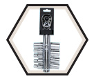 "Chrome Socket Set - 1/2"" - 6 Point / 13619 *10 Pc"
