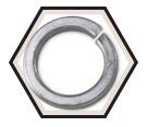 Lock Washer - Hi-Collar Helical Spring - Steel / Zinc