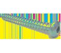 Pan / Round Head #12 Robertson Sheet Metal Screws / Zinc (BULK)