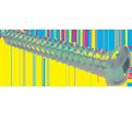 Pan / Round Head #6 Robertson Sheet Metal Screws / Zinc (BULK)