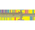 """Pin Bolt Anchor - 3/16"""" Nylon Anchor - Zinc Plated Nail / NYL"""