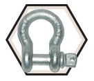 Screw Pin Anchor Shackle - GV